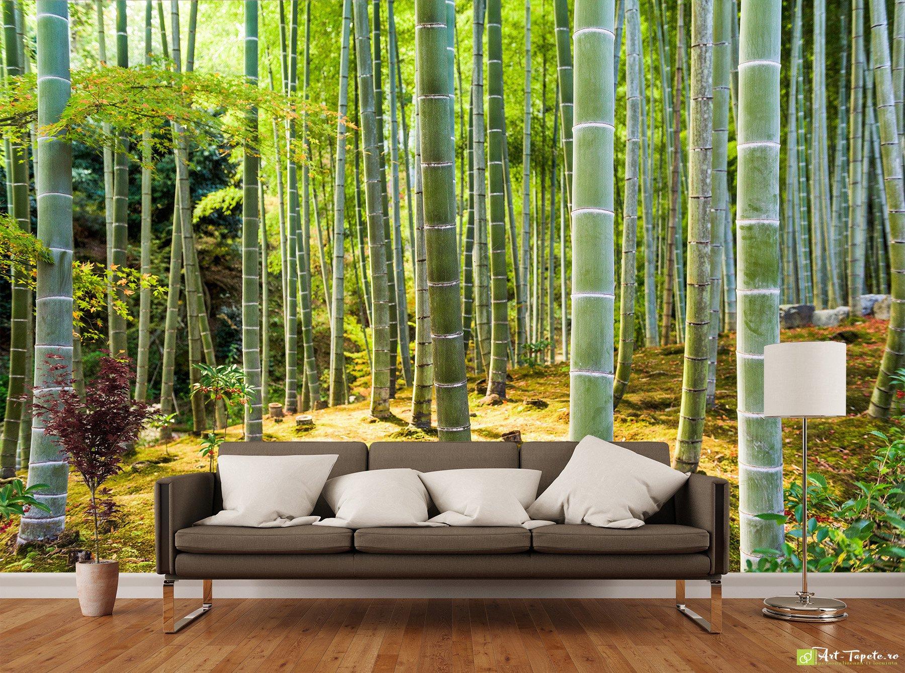 Фотообои лес интернет магазин