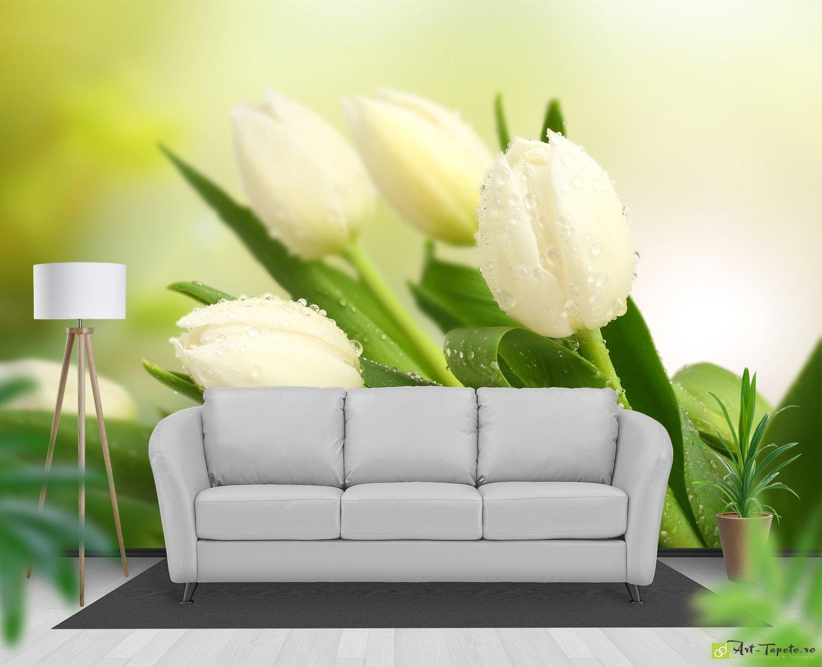 Обои тюльпаны на стены