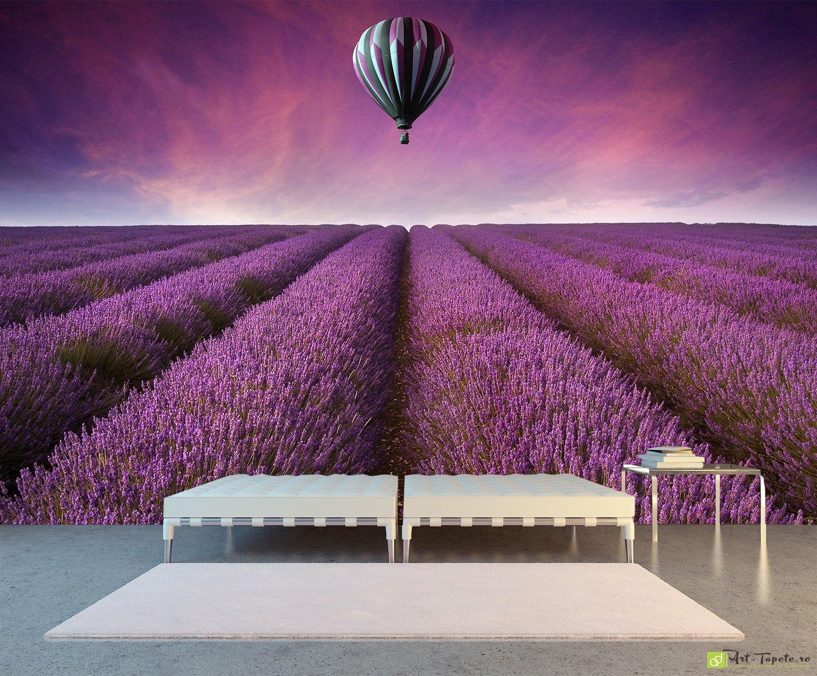 версии фото лаванда и воздушные шары прикрывает