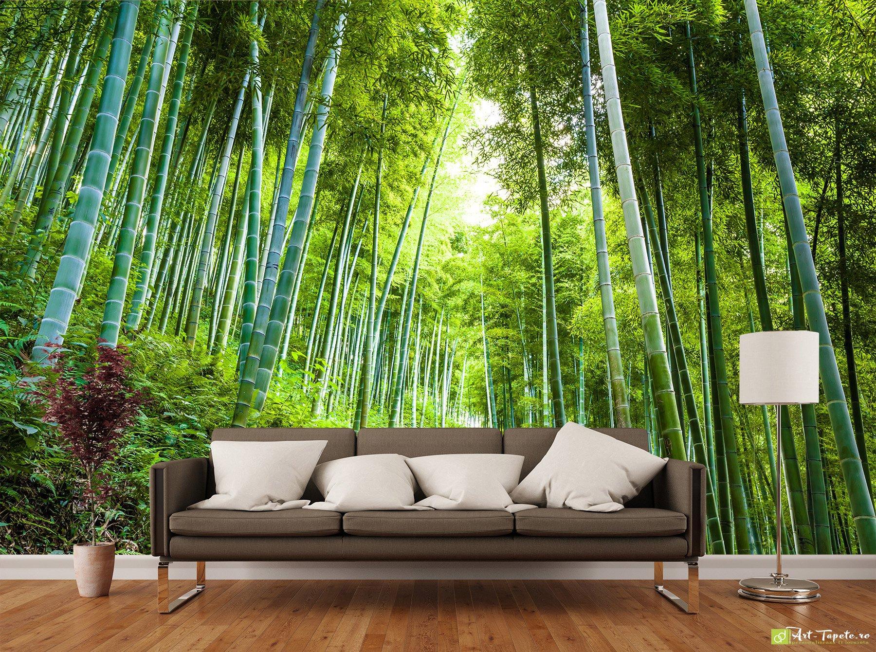 Nature Wallpaper Wall Murals Bamboo Forest Fototapetart Photo