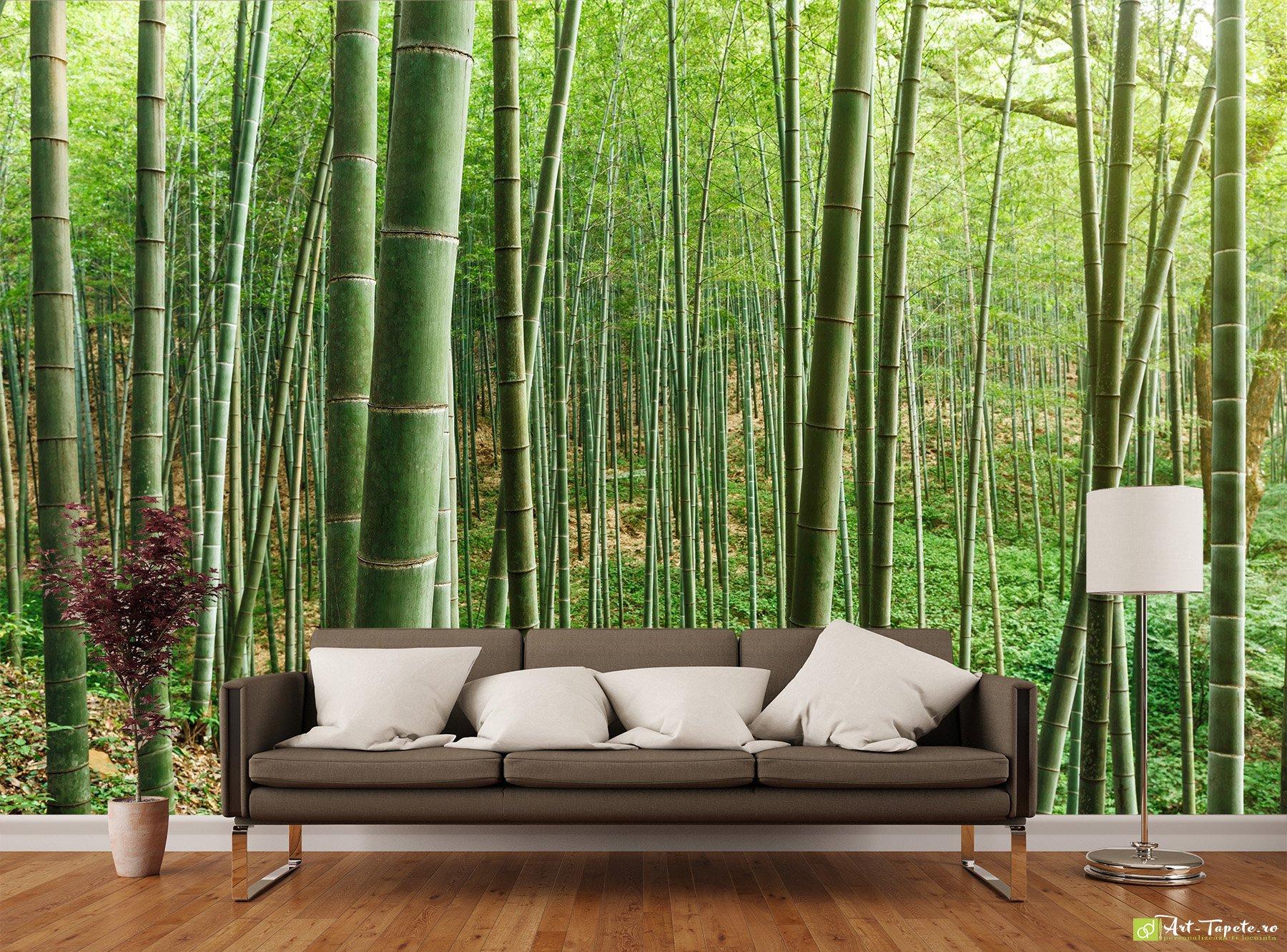 Wall Decor Tapet : Nature wallpaper wall murals bamboo forest